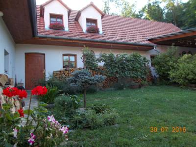 Apartment Homestay in Výrovice