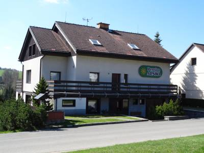 Pension Arnika in Destne v Orlickych Horach