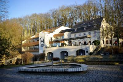 Pension Hotel U Kozicky in Teplitz