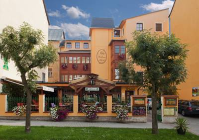 Wellness Hotel Ida in Franzensbad